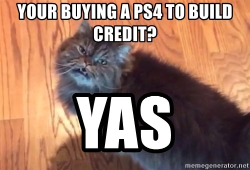 your buying a ps4 to build credit yas your buying a ps4 to build credit? yas yas cat meme generator