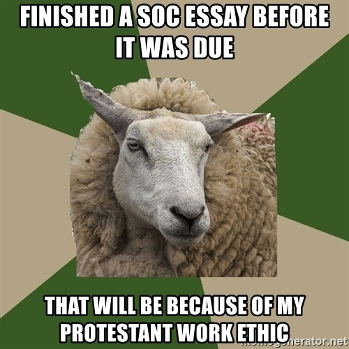 finished a soc essay before it was due that will be because of my  finished a soc essay before it was due that will be because of my protestant work ethic sociology student sheep