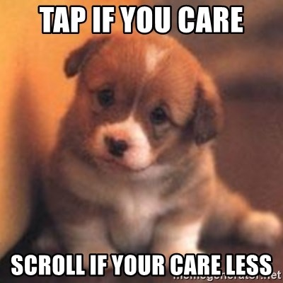 cute puppy - Tap if you care scroll if your care less