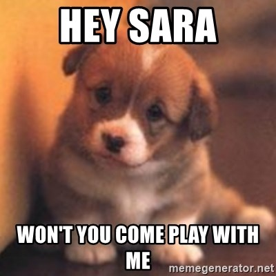 cute puppy - Hey Sara Won't you come play with me