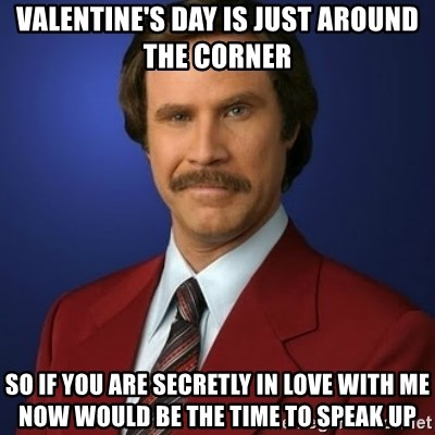 Anchorman Birthday   Valentineu0027s Day Is Just Around The Corner So If You  Are Secretly In