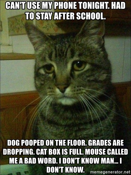 Canu0027t Use My Phone Tonight. Had To Stay After School. Dog Pooped On The  Floor. Grades Are Dropping. Cat Box Is Full. Mouse Called Me A Bad Word.