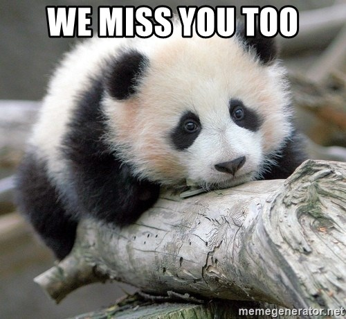 we miss you too we miss you too sad panda meme generator,We Miss You Meme