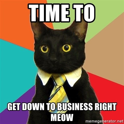 time to get down to business right meow time to get down to business right meow business cat meme,Get Down Business Meme