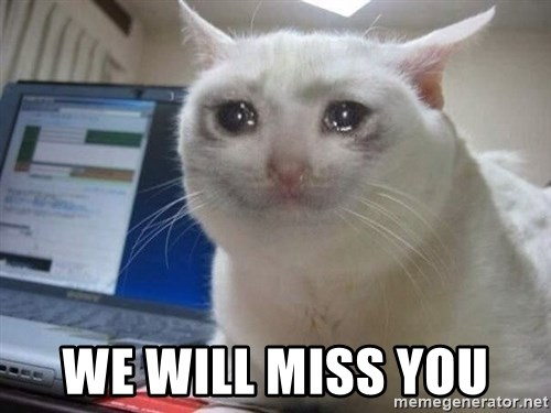 we will miss you crying cat meme generator. Black Bedroom Furniture Sets. Home Design Ideas
