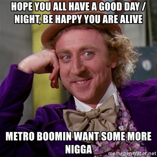 hope you all have a good day night be happy you are alive metro boomin want some more nigga hope you all have a good day night, be happy you are alive metro,Metro Boomin Meme