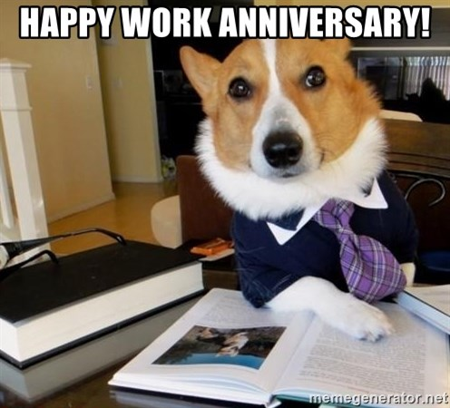 Happy Work Anniversary! - Dog Lawyer | Meme Generator