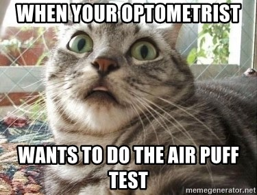 scared cat - when your optometrist wants to do the air puff test