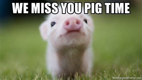we miss you pig time we miss you pig time cute pig meme generator,We Miss You Meme