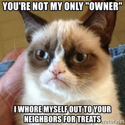 """Grumpy Cat  - You're not my only """"owner"""" I whore myself out to your neighbors for treats"""