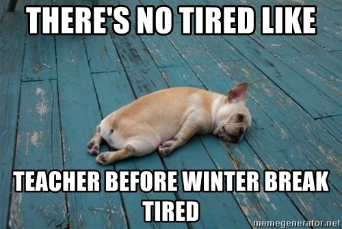tired dog - There's no tired like teacher before winter break tired