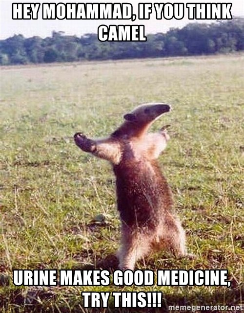 Anteater - hey mohammad, if you think camel urine makes good medicine, try this!!!