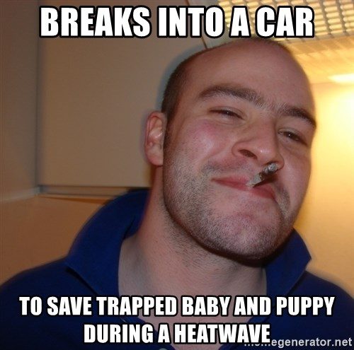 Good Guy Greg - Breaks into a car to save trapped baby and puppy during a heatwave
