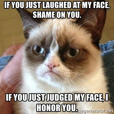 Grumpy Cat  - If you just laughed at my face, shame on you. If you just judged my face, i honor you.