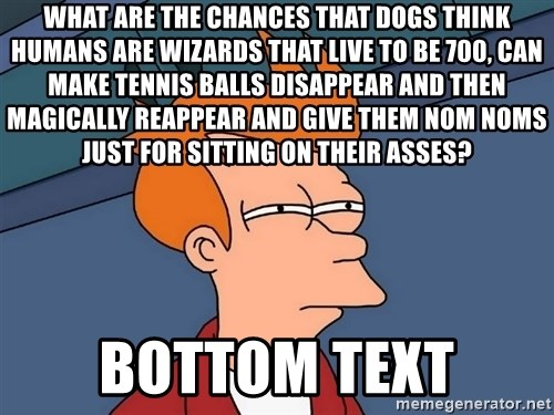 Futurama Fry - What are the chances that dogs think humans are wizards that live to be 700, can make tennis balls disappear and then magically reappear and give them nom noms just for sitting on their asses? bottom text