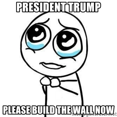 Please guy - PRESIDENt trump Please build the wall now