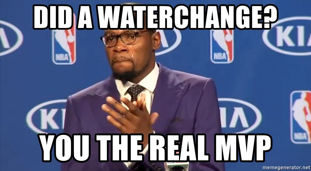 KD you the real mvp f - Did a waterchange? you the real MVP