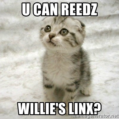 Can haz cat - u can reedz willie's linx?