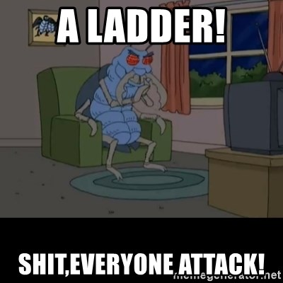 Family Guy Beetle - A ladder! Shit,everyone attack!