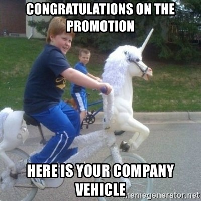unicorn - Congratulations on the promotion Here is your company vehicle