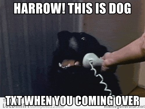 Hello This is Dog - Harrow! this is dog txt when you coming over