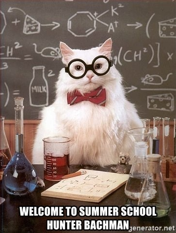 Chemistry Cat -  Welcome to summer school Hunter Bachman