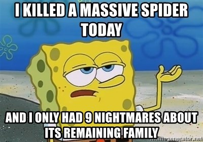 I'll have you know - I killed a massive spider today And I only had 9 nightmares about its remaining family