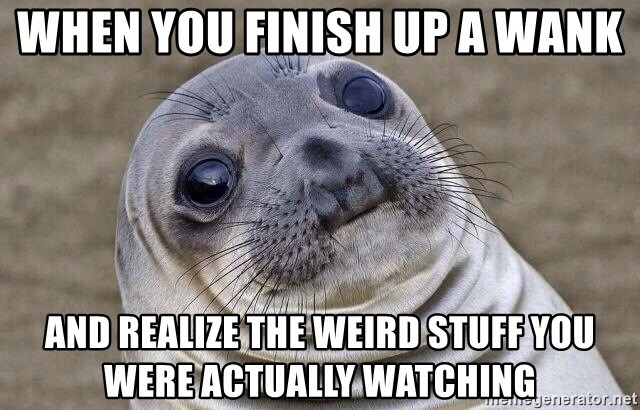 Awkward Seal - When you finish up a wank and REALIZE the weird stuff you were actually watching