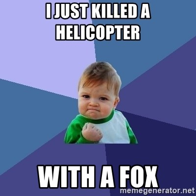 Success Kid - i just killed a helicopter  with a fox