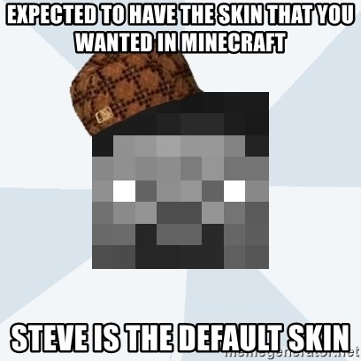 Expected To Have The Skin That You Wanted In Minecraft Steve Is