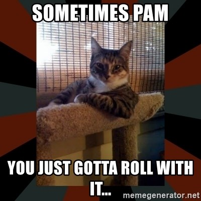The Most Interesting Cat in the World - Sometimes Pam You just gotta roll with it...