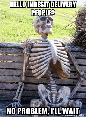 Waiting Skeleton - Hello Indesit Delivery people? No problem, I'll wait