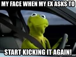kermit the frog in car - My face when my ex asks to start kicking it again!