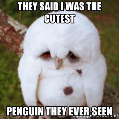 Sad Owl Baby - they said i was the cutest penguin they ever seen