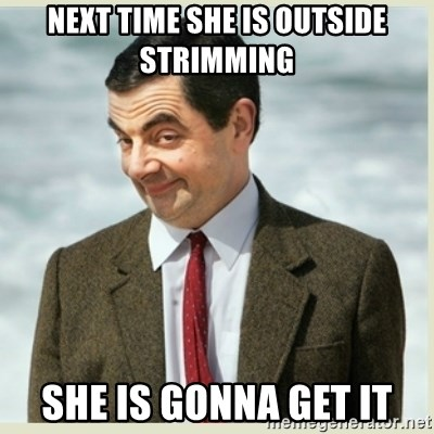 MR bean - next time she is outside strimming she is gonna get it