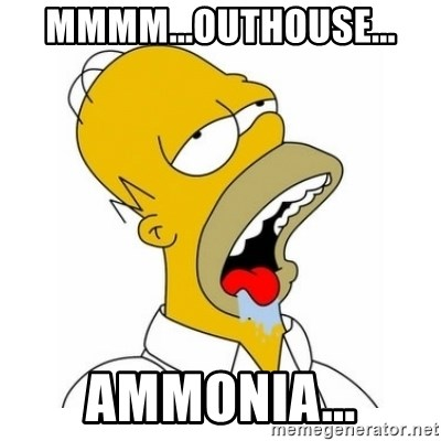 Homer Simpson Drooling - Mmmm...outhouse... Ammonia...