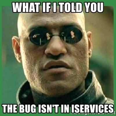 Matrix Morpheus - what if i told you the bug isn't in iservices