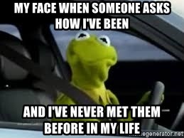 kermit the frog in car - My face when someone asks how I've been And I've never met them before in my life