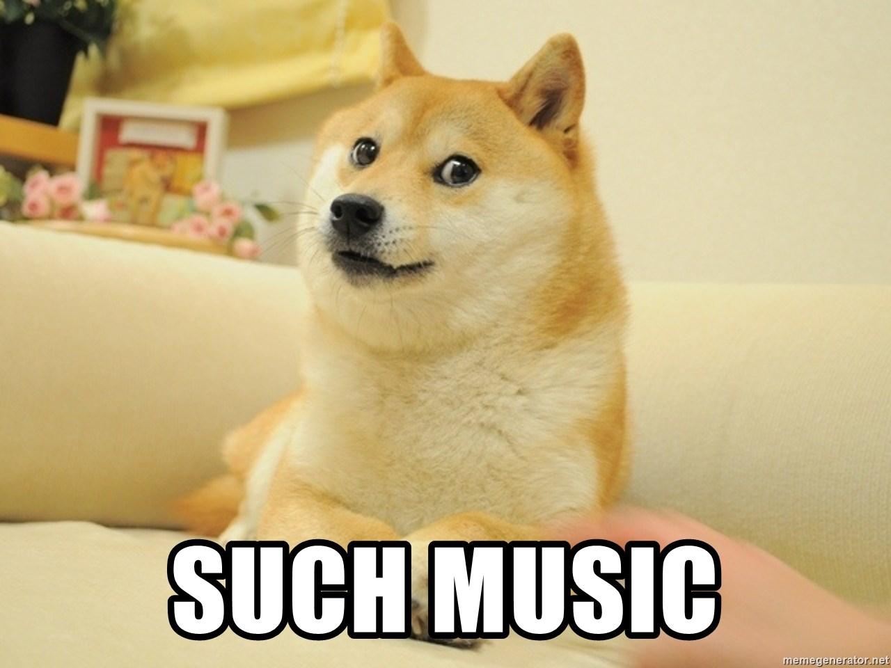 so doge -  SUCH MUSIC