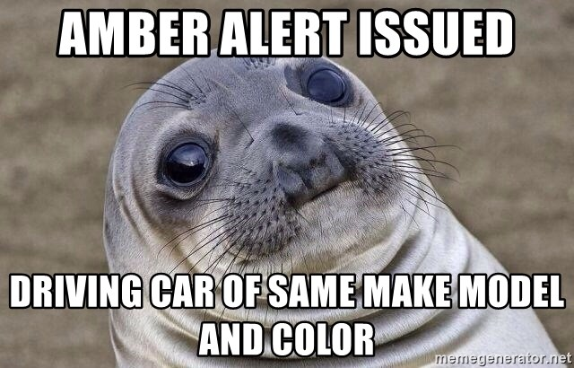 Awkward Seal - Amber Alert Issued driving car of same make model and color