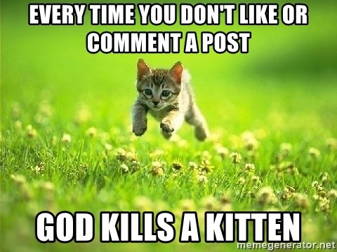 God Kills A Kitten - every time you don't like or comment a post god kills a kitten