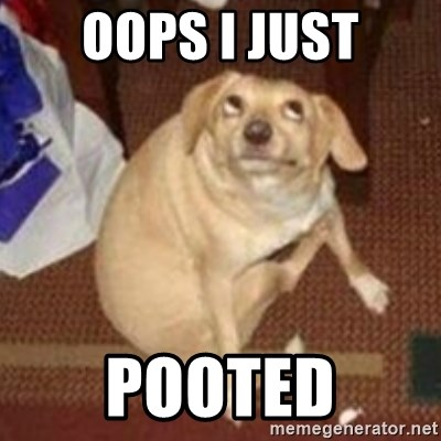 Oh You Dog - oops i just pooted
