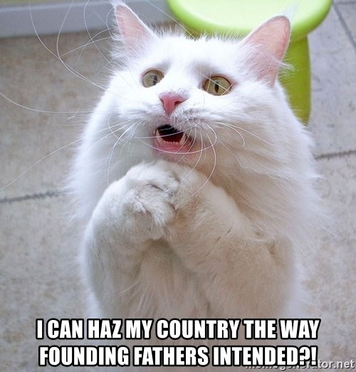 i can haz cat - i can haz my country the way founding fathers intended?!