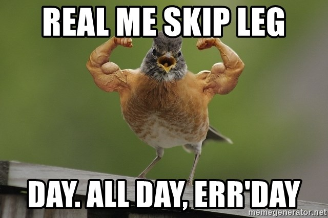 real me skip leg day all day errday real me skip leg day all day, err'day even jarred's bird skips