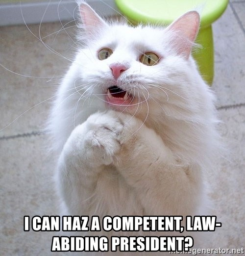 i can haz cat - i can haz a competent, law-abiding president?
