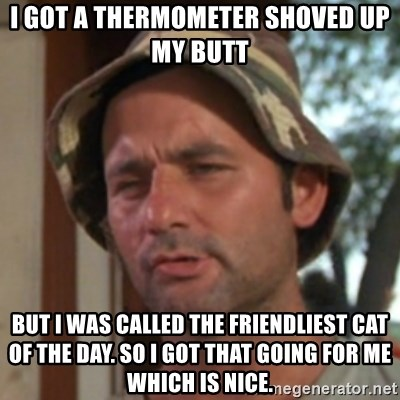 Thermometer Up The Butt