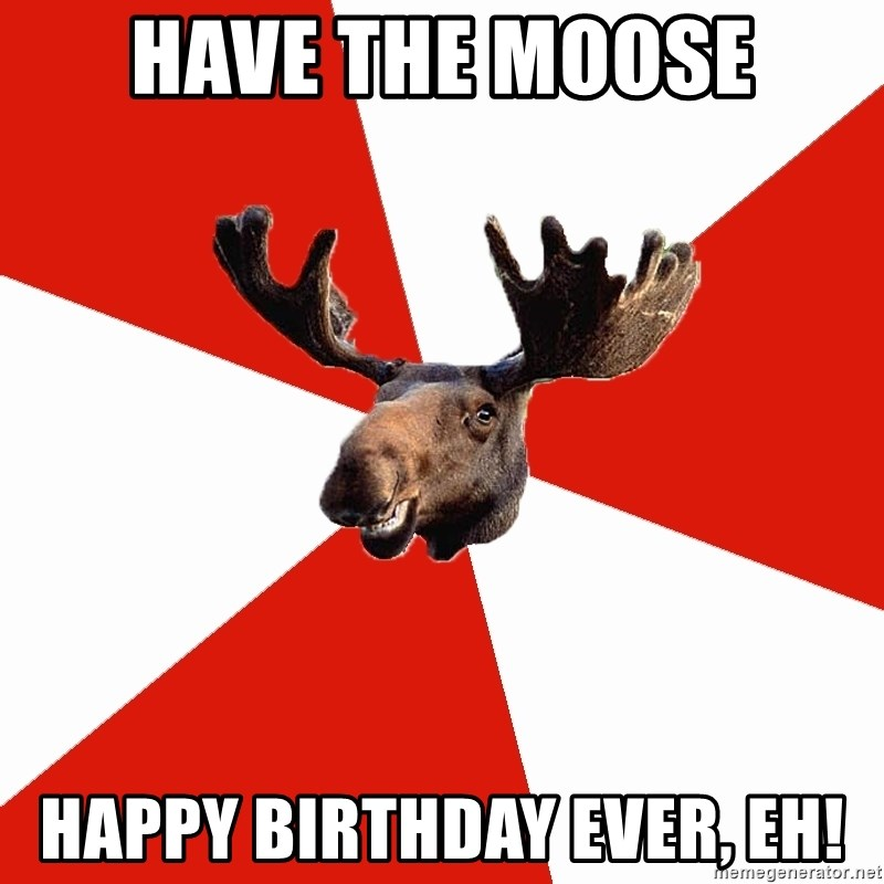 Stereotypical Canadian Moose - Have the moose happy birthday ever, eh!