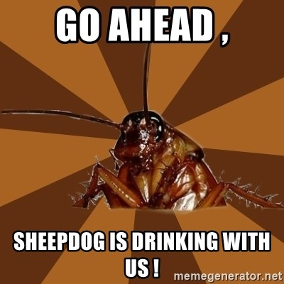 Eat The Cockroach - Go ahead , Sheepdog is drinking with us !