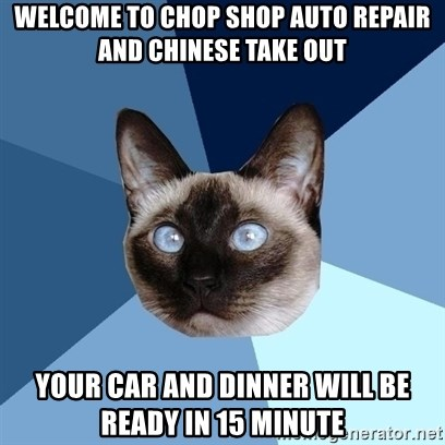 Chronic Illness Cat - welcome to chop shop auto repair and chinese take out your car and dinner will be ready in 15 minute