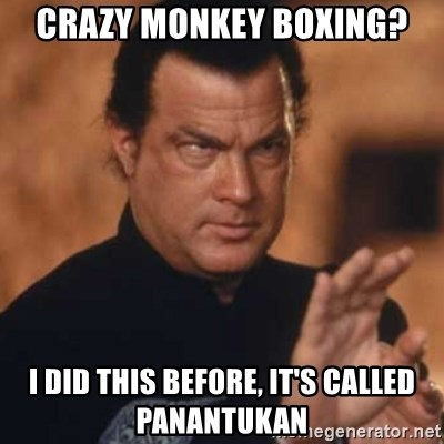 Steven Seagal - crazy monkey boxing? I did this before, it's called panantukan